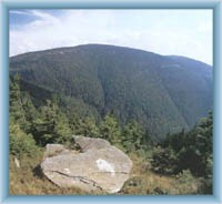 Berg Keprník