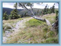 Naturlehrpfad Velká kotlina