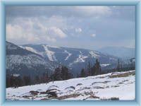Přední Planina aus Medvědín