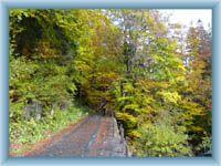 Weg Weberova cesta