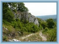 Naturreservat Děvín