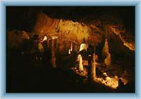 Höhlen Sloupsko-šosůvské jeskyně - Tropfsteine