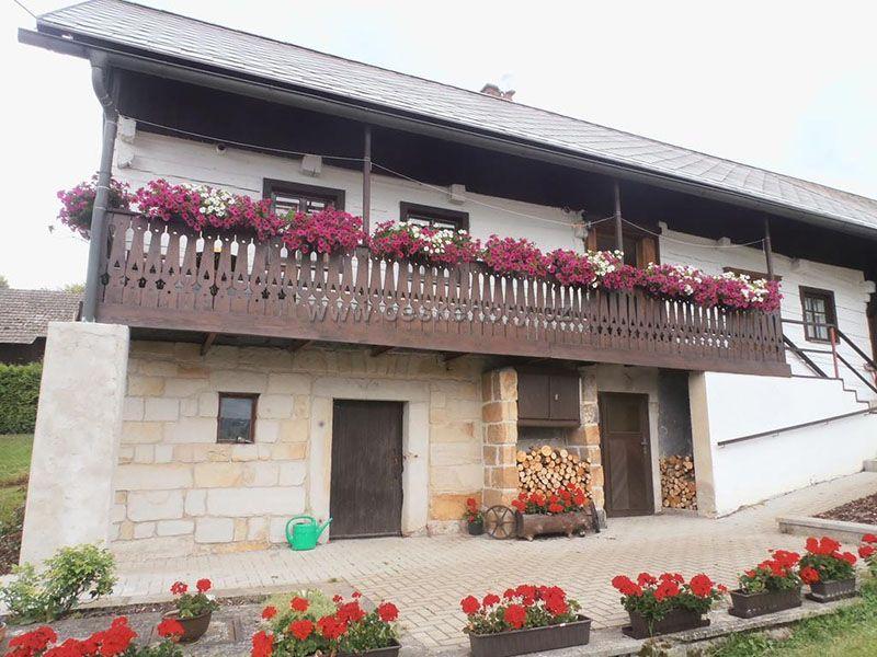 Holzhütte Doubravice