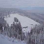 Skizentrum Zlatník - Fela