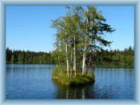 Teich Kladský rybník