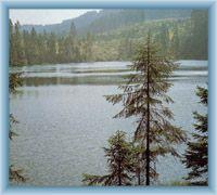 See Prášilské jezero